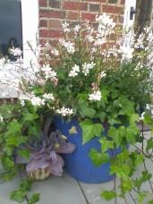 Spring Serene Gardens 2015